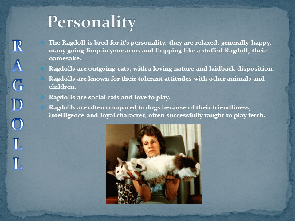 Personality R. A. G. D. O. L.