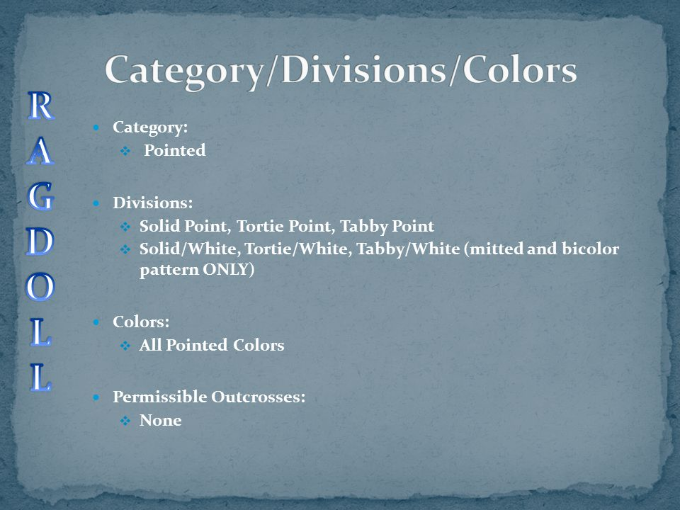 Category/Divisions/Colors
