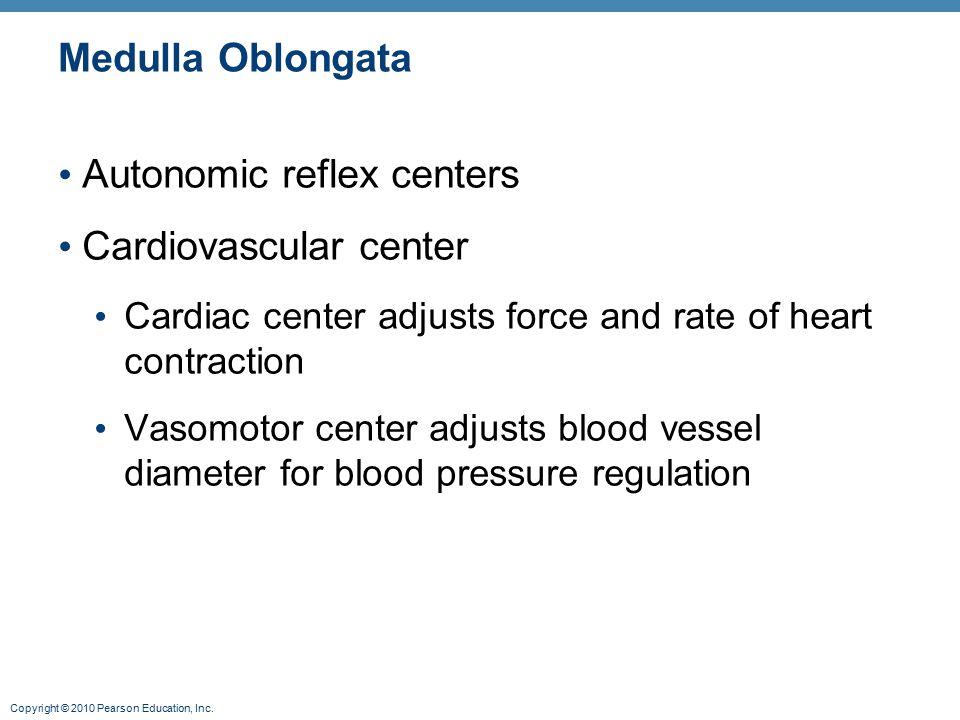 Autonomic reflex centers Cardiovascular center