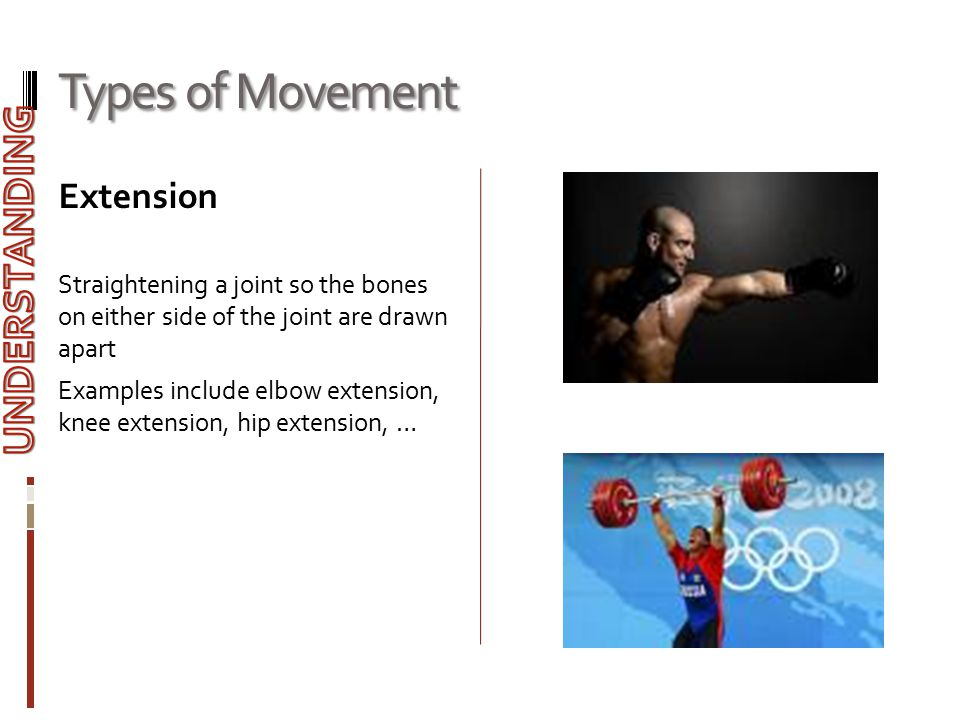 Types of Movement UNDERSTANDING Extension