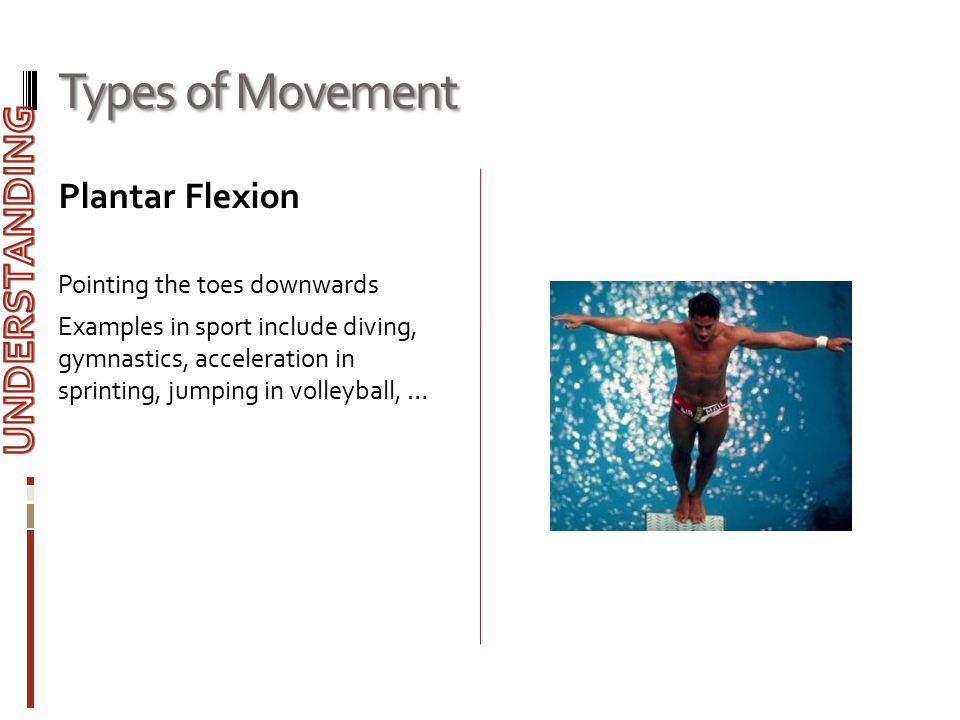 Types of Movement UNDERSTANDING Plantar Flexion