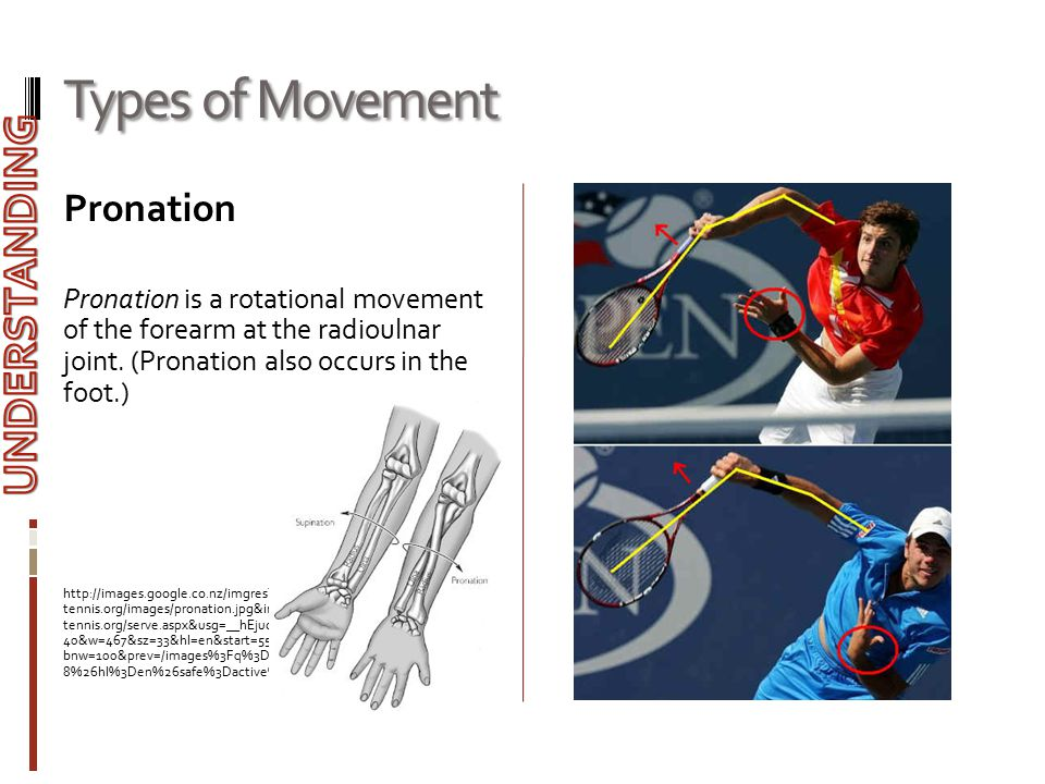 Types of Movement UNDERSTANDING Pronation