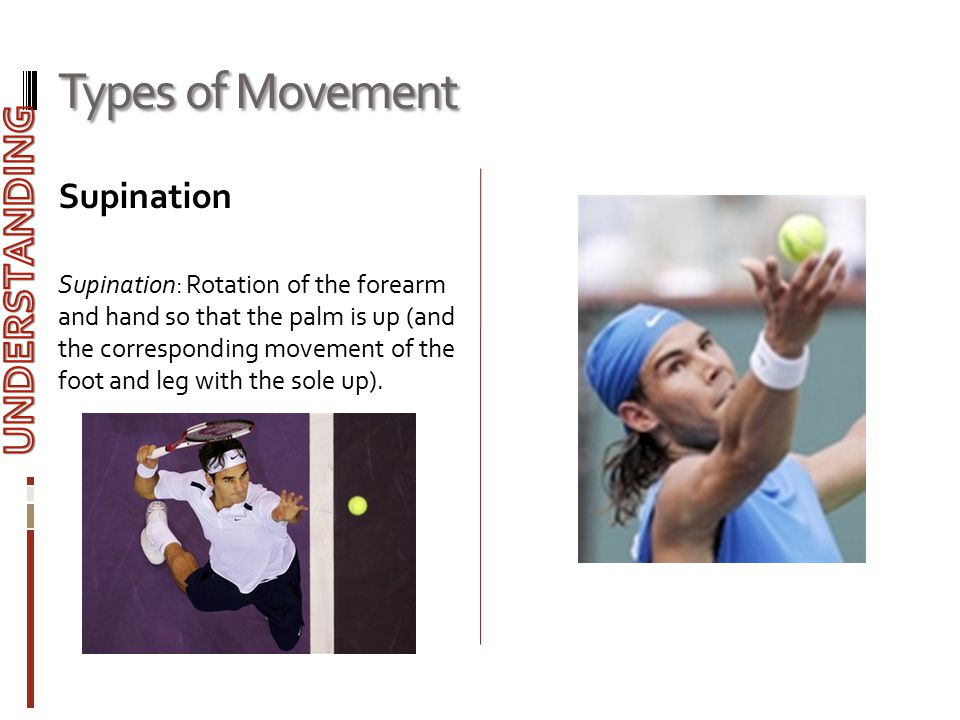 Types of Movement UNDERSTANDING Supination