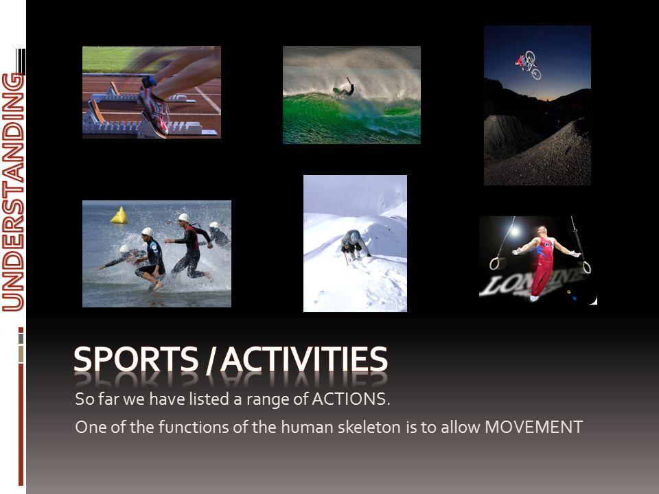 Sports / activities UNDERSTANDING