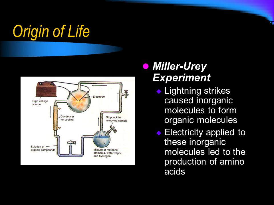 Origin of Life Miller-Urey Experiment