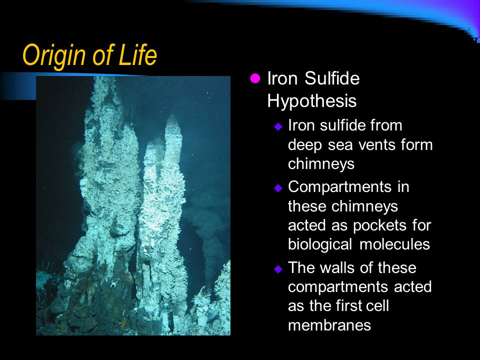 Origin of Life Iron Sulfide Hypothesis