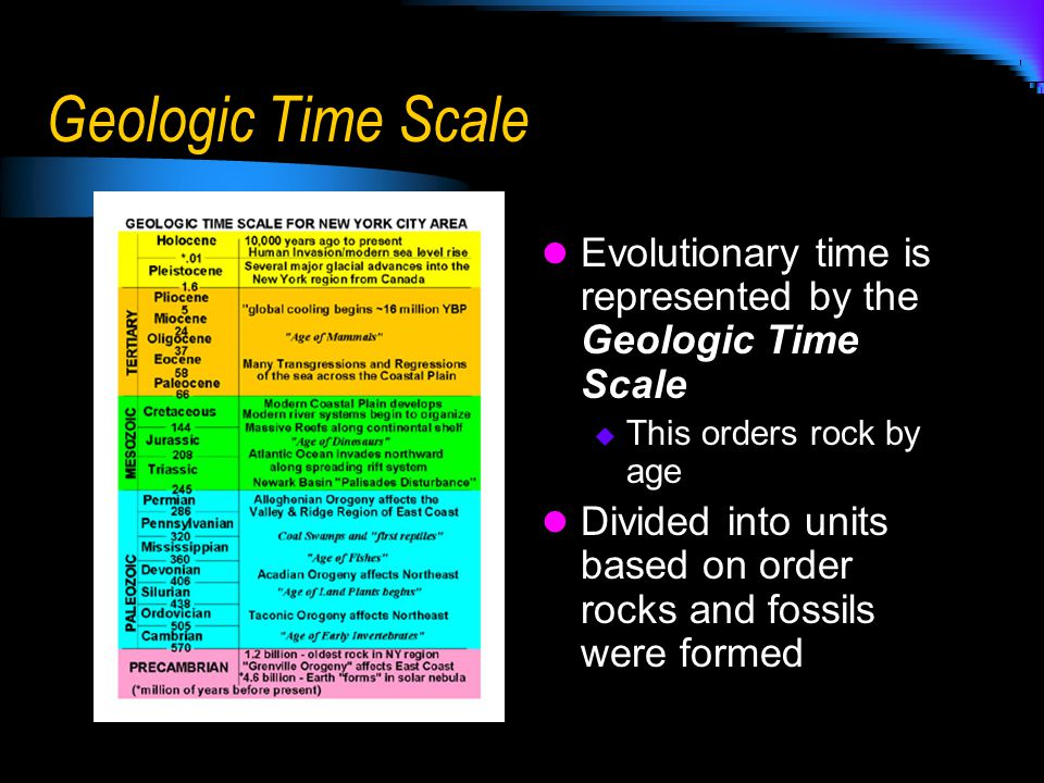 Geologic Time Scale Evolutionary time is represented by the Geologic Time Scale. This orders rock by age.