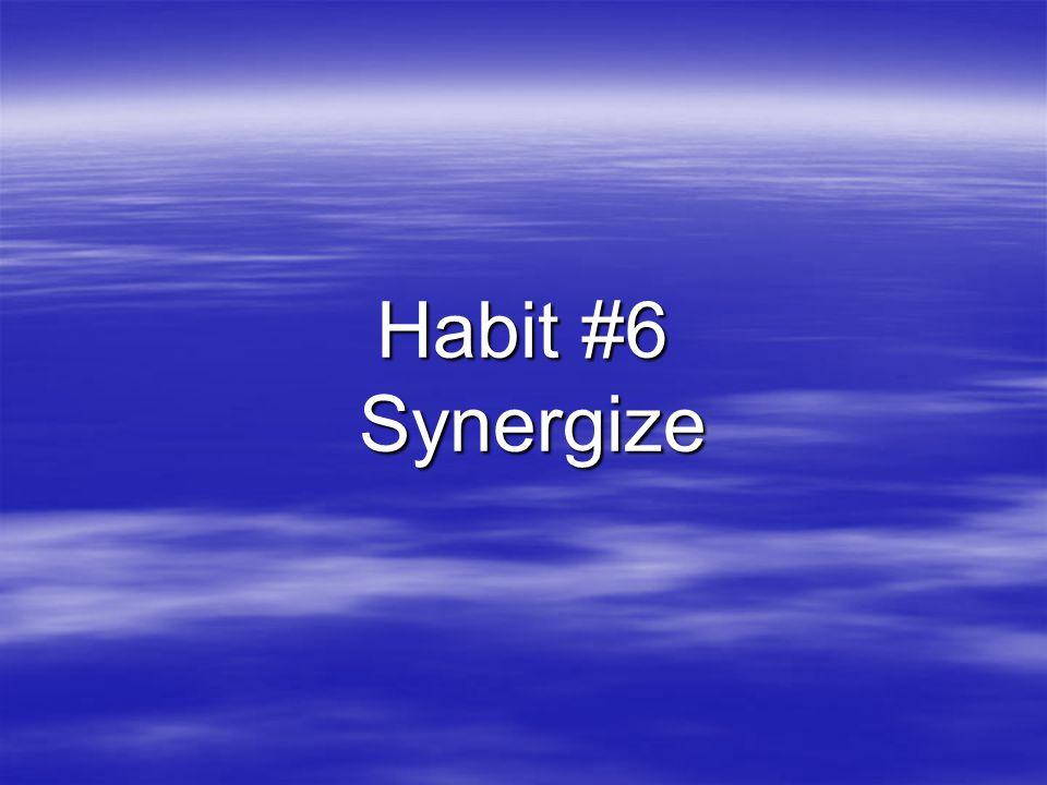 Habit #6 Synergize