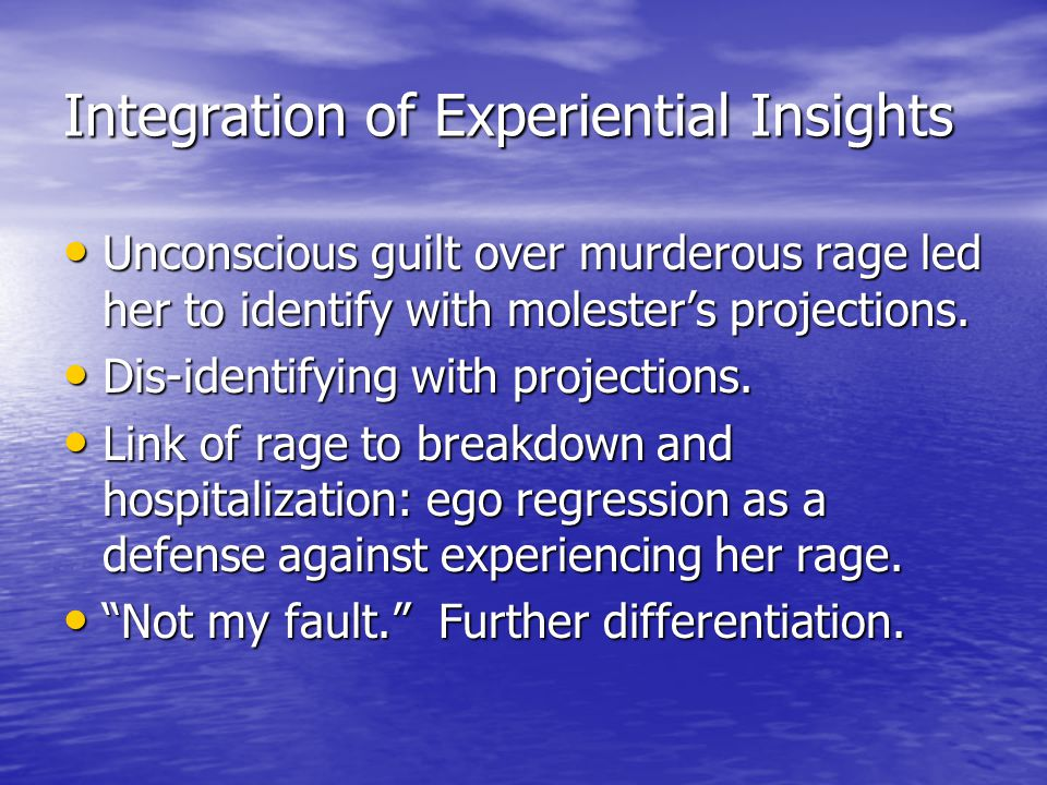 Integration of Experiential Insights