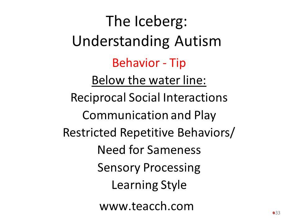 The Iceberg: Understanding Autism