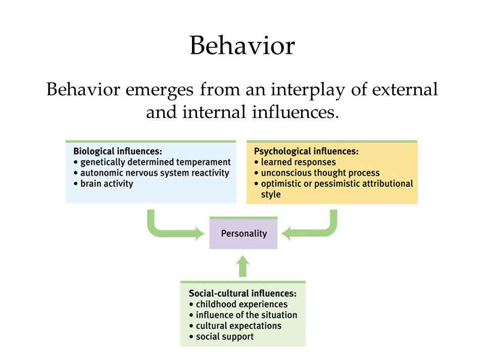 Behavior Behavior emerges from an interplay of external and internal influences. 89