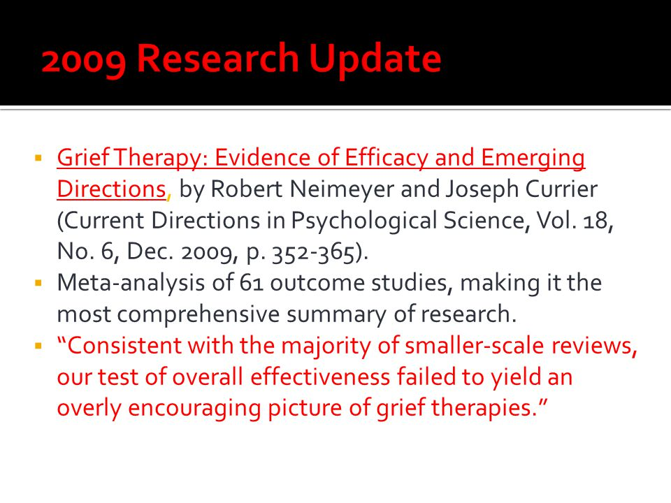 2009 Research Update