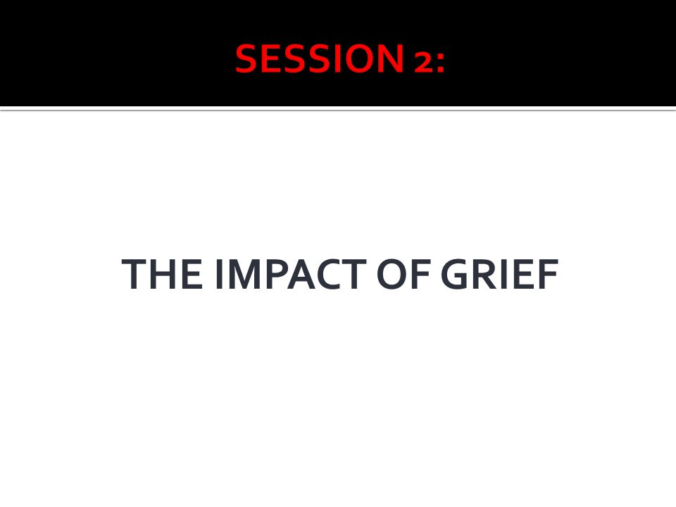 SESSION 2: THE IMPACT OF GRIEF