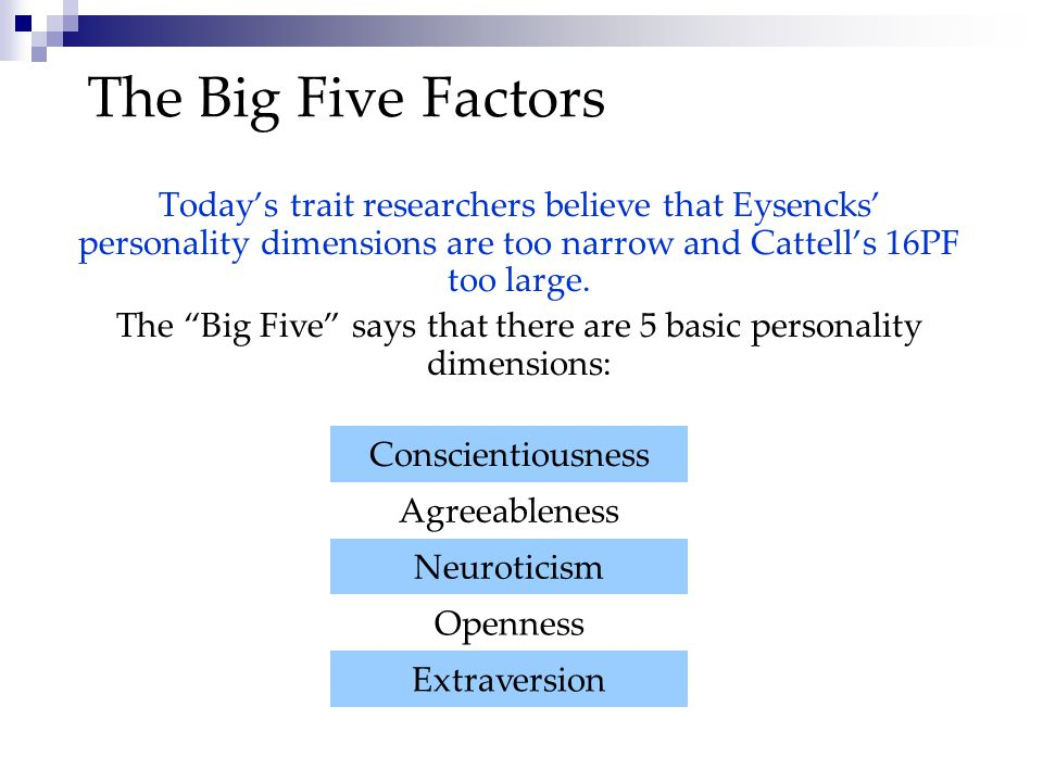 The Big Five says that there are 5 basic personality dimensions: