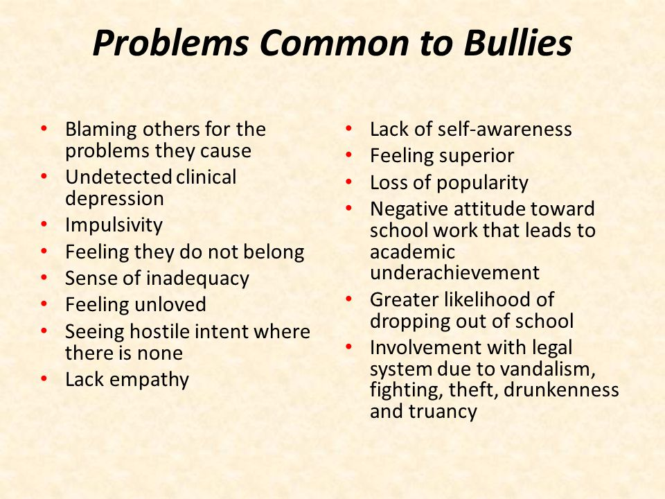 Problems Common to Bullies