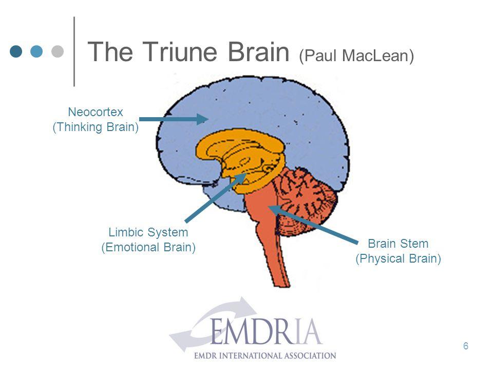 The Triune Brain (Paul MacLean)