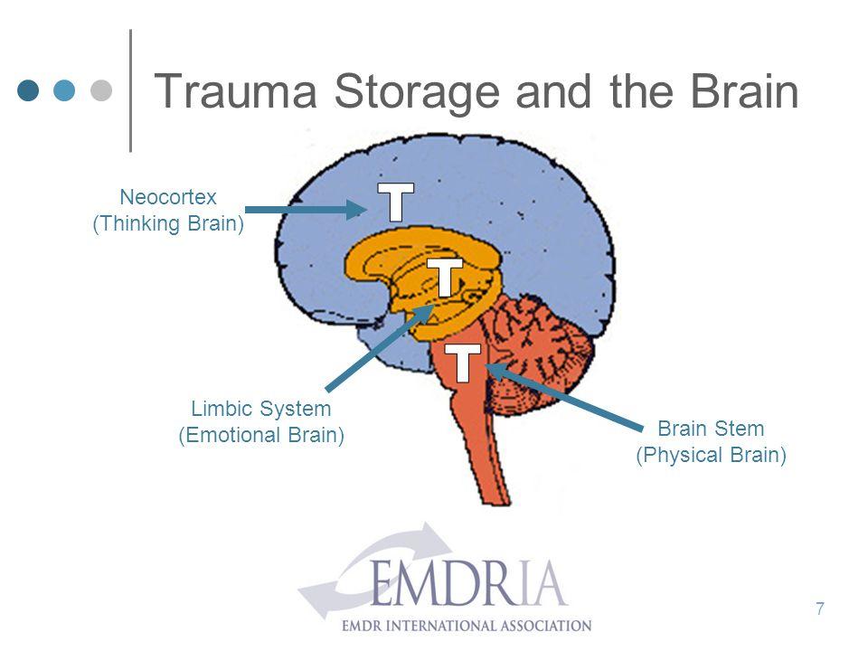 Trauma Storage and the Brain