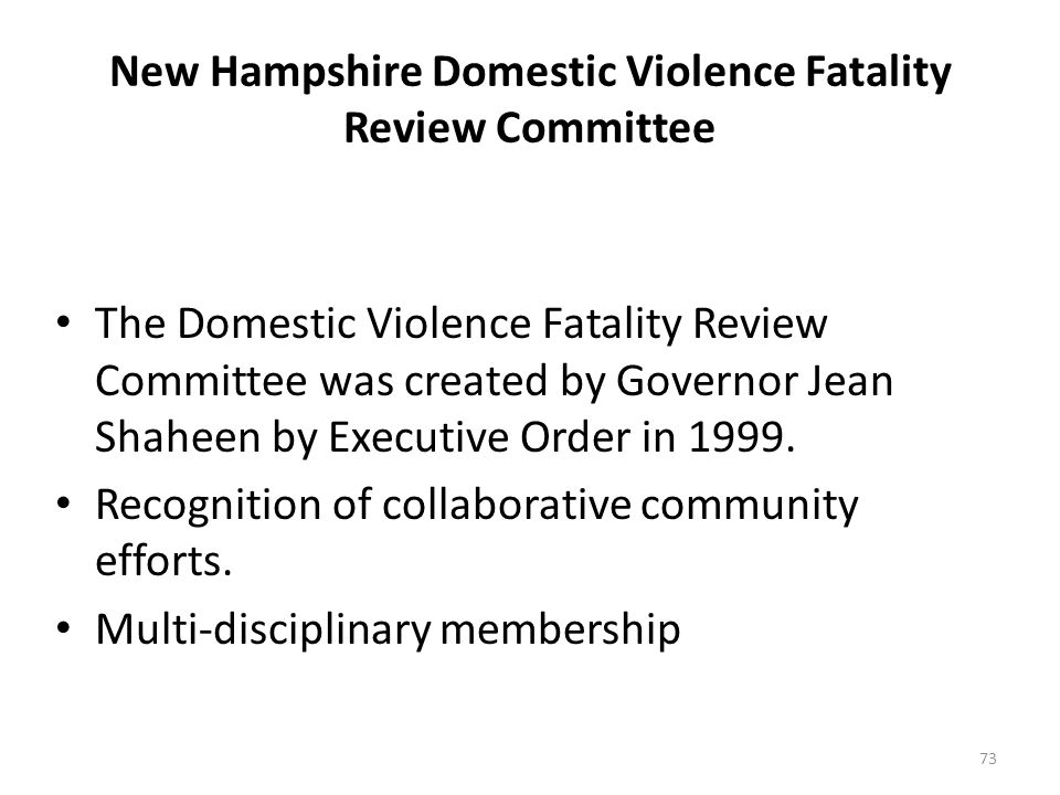 New Hampshire Domestic Violence Fatality Review Committee