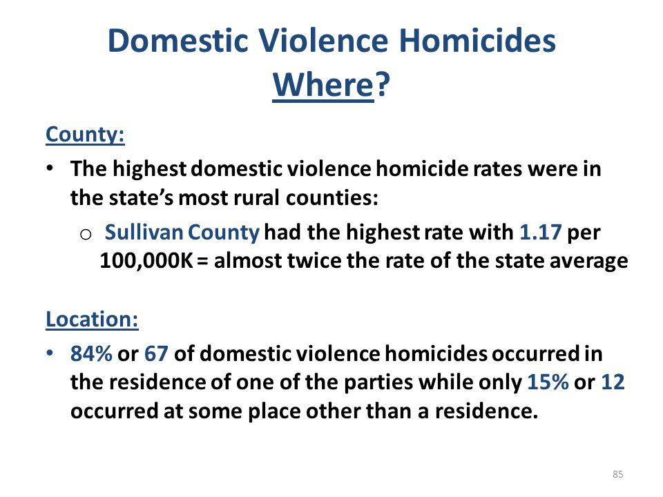 Domestic Violence Homicides Where