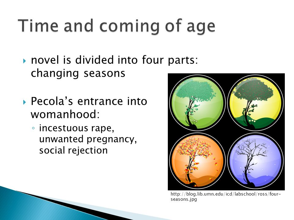 Time and coming of age novel is divided into four parts: changing seasons. Pecola's entrance into womanhood: