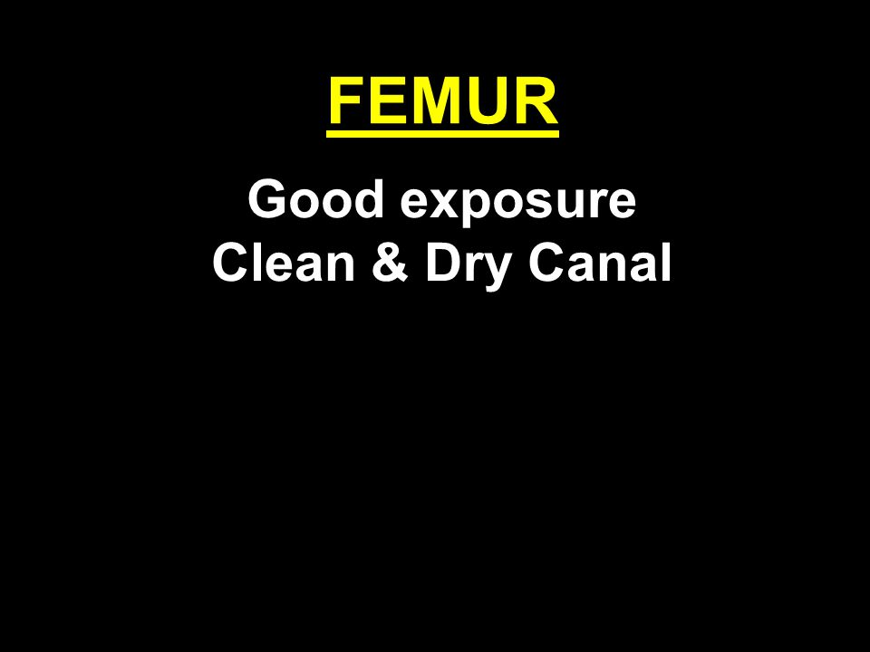 FEMUR Good exposure Clean & Dry Canal