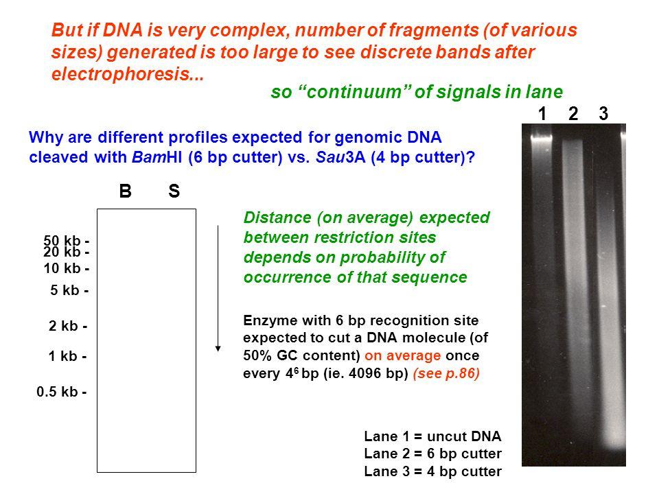so continuum of signals in lane 1 2 3