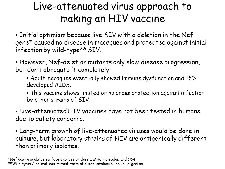 Live-attenuated virus approach to making an HIV vaccine