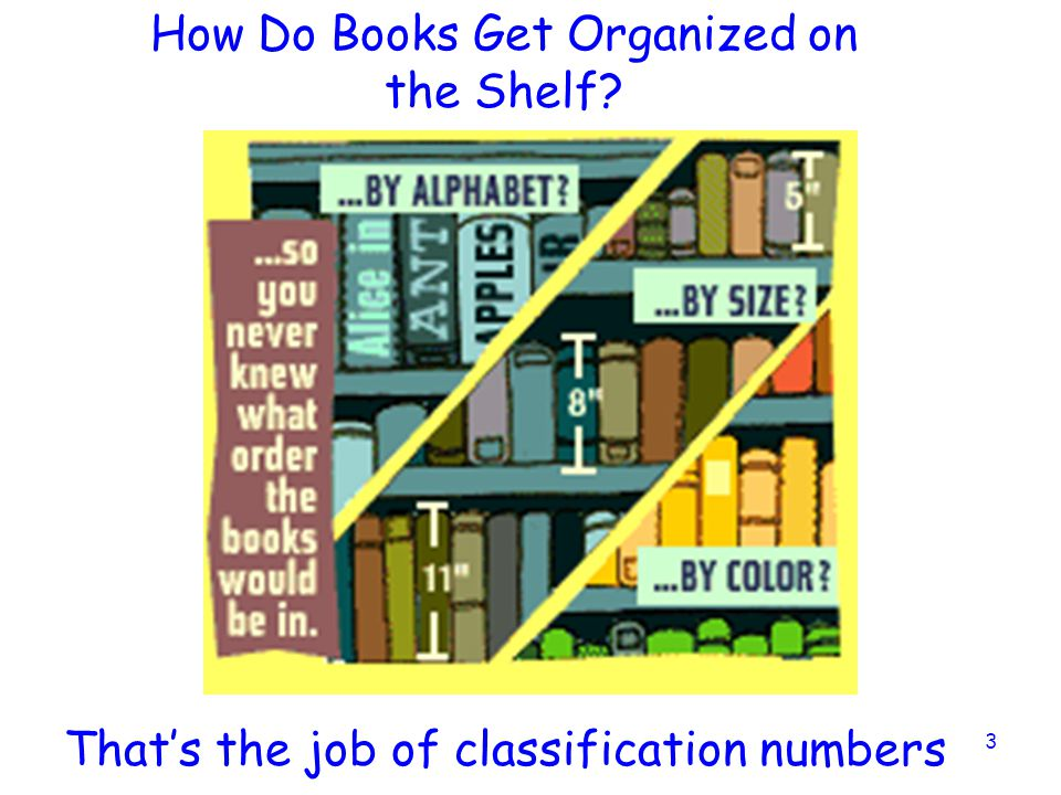 How Do Books Get Organized on the Shelf