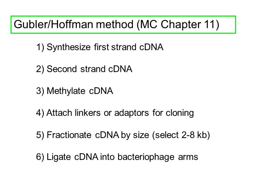 Gubler/Hoffman method (MC Chapter 11)