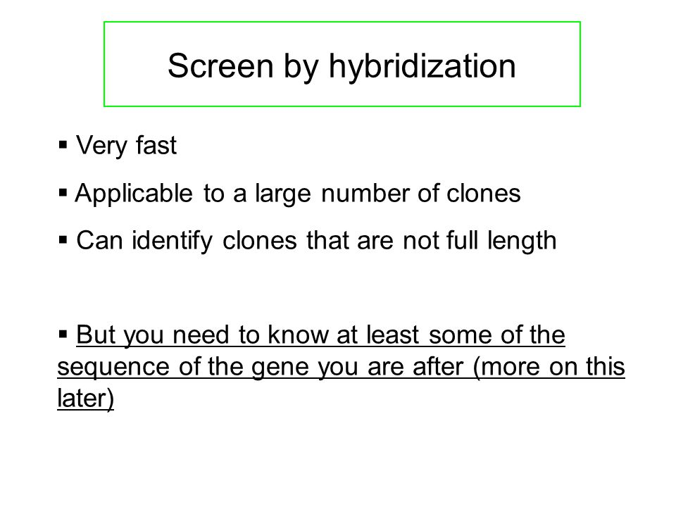 Screen by hybridization