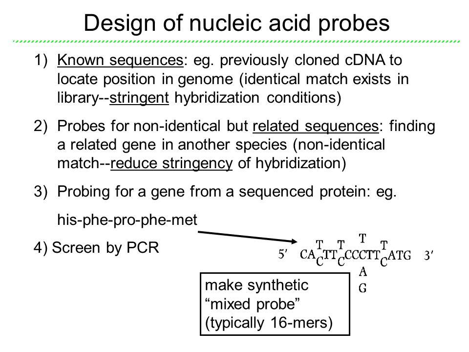 Design of nucleic acid probes