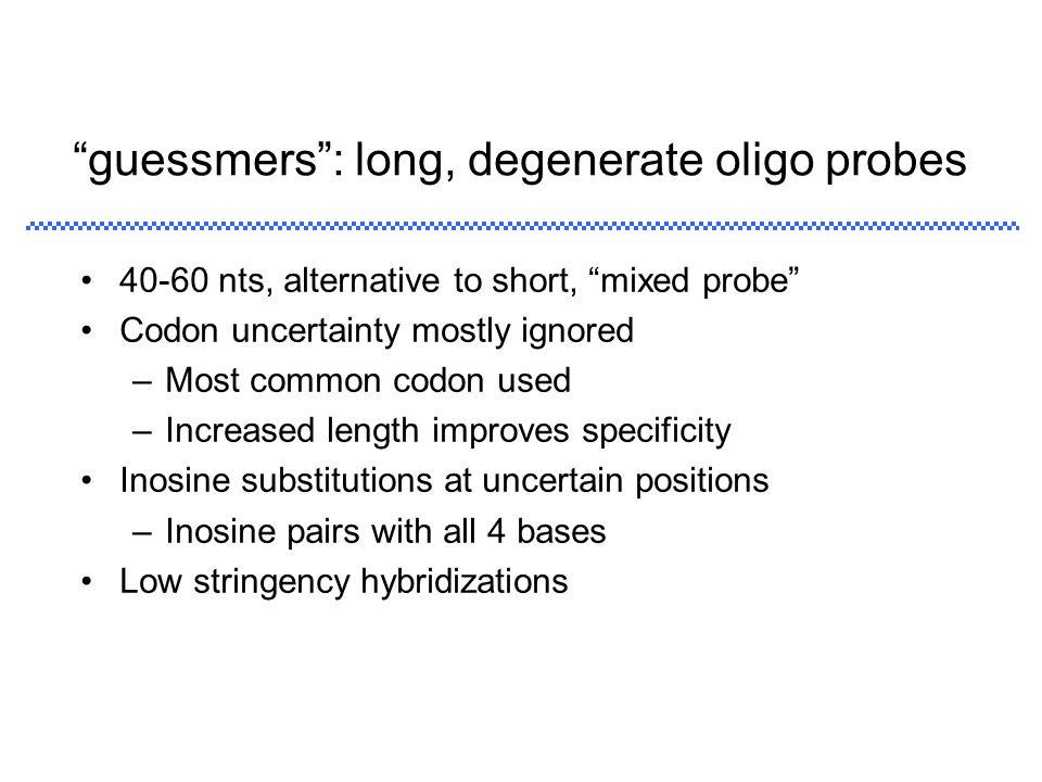 guessmers : long, degenerate oligo probes