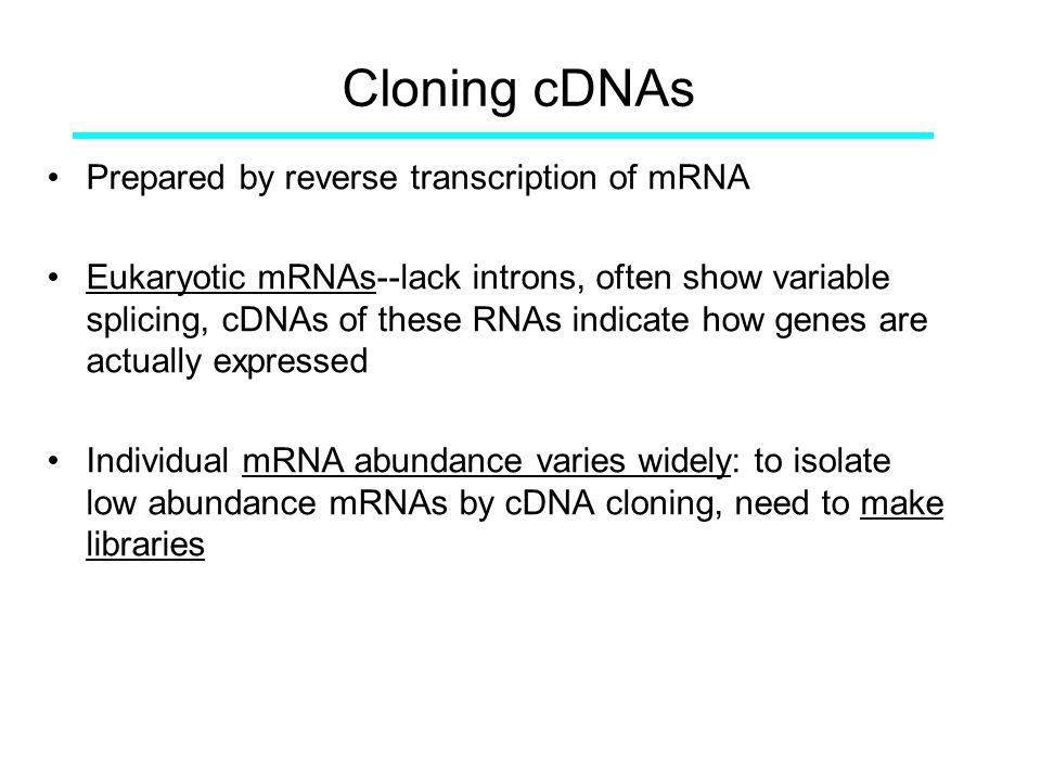Cloning cDNAs Prepared by reverse transcription of mRNA