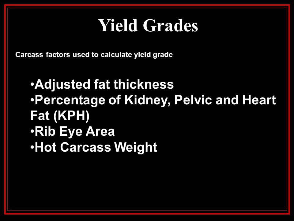 Yield Grades Adjusted fat thickness