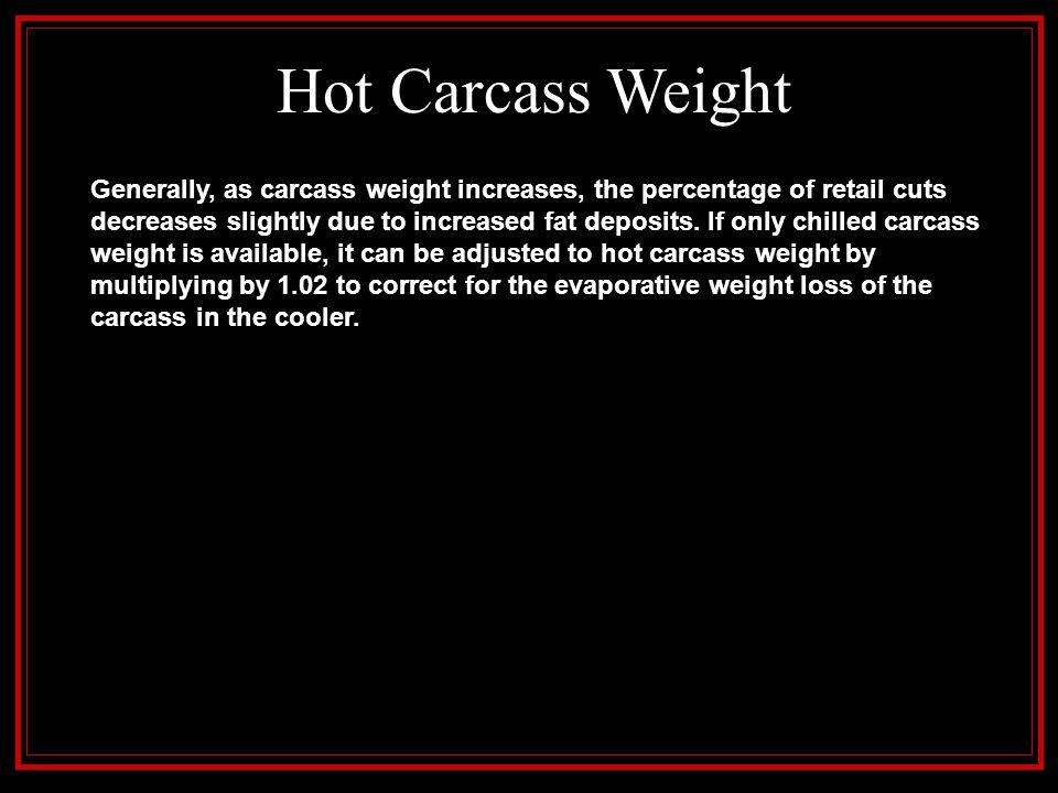 Hot Carcass Weight