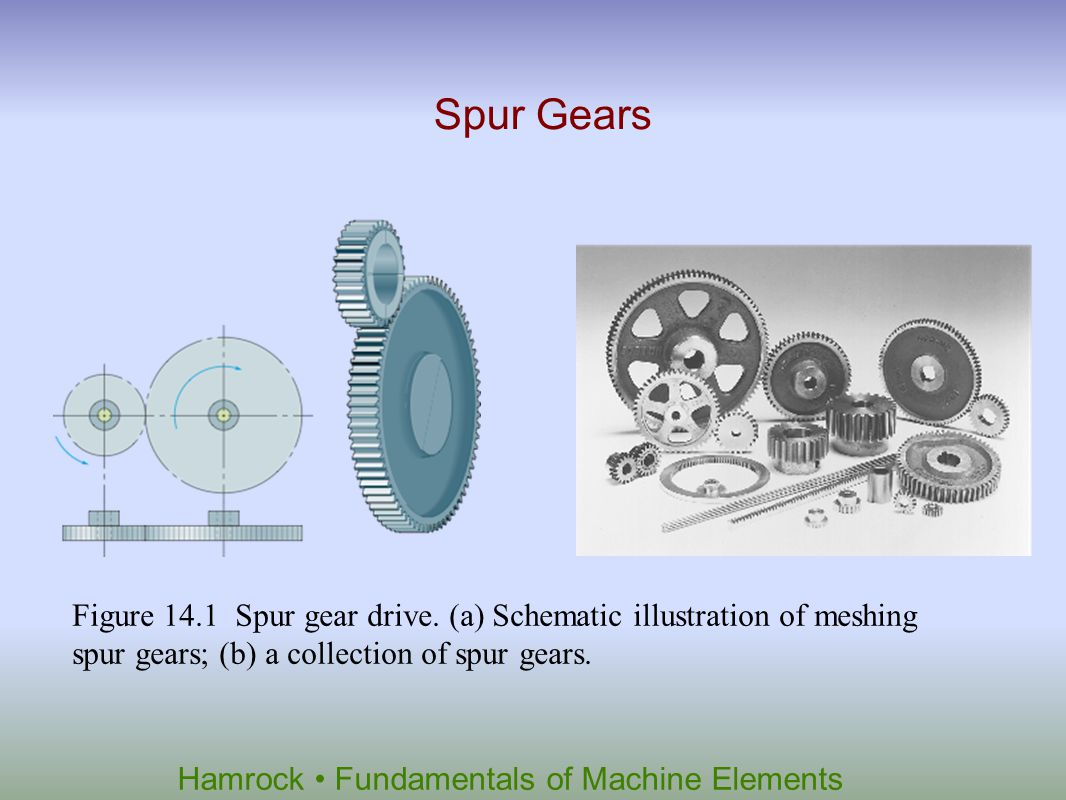 Spur Gears Figure 14.1 Spur gear drive.