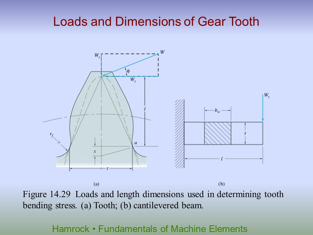 Loads and Dimensions of Gear Tooth
