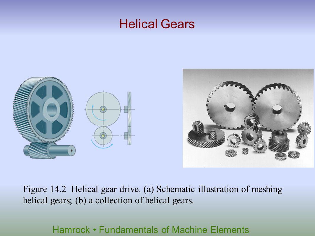 Helical Gears Figure 14.2 Helical gear drive.