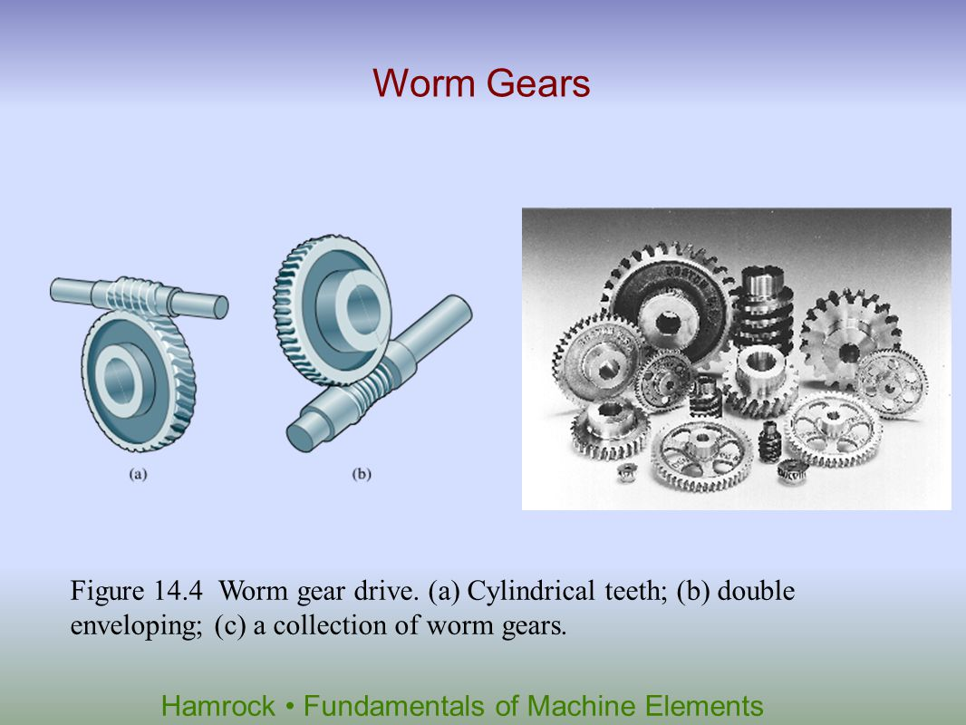 Worm Gears Figure 14.4 Worm gear drive.