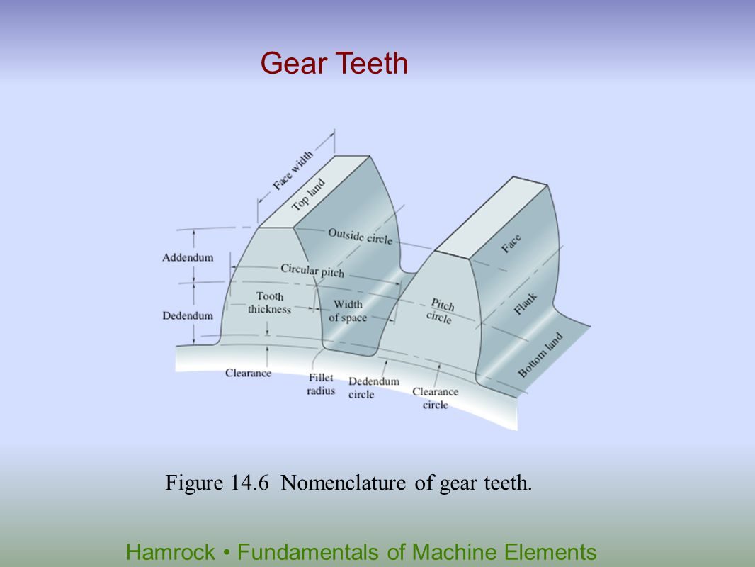 Gear Teeth Figure 14.6 Nomenclature of gear teeth.