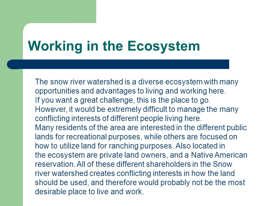 Working in the Ecosystem
