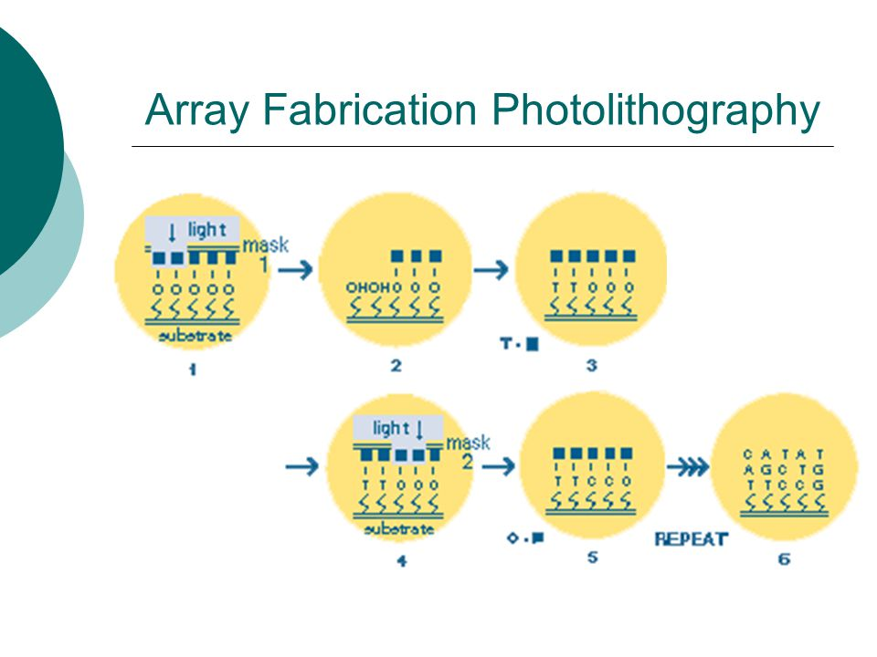 Array Fabrication Photolithography