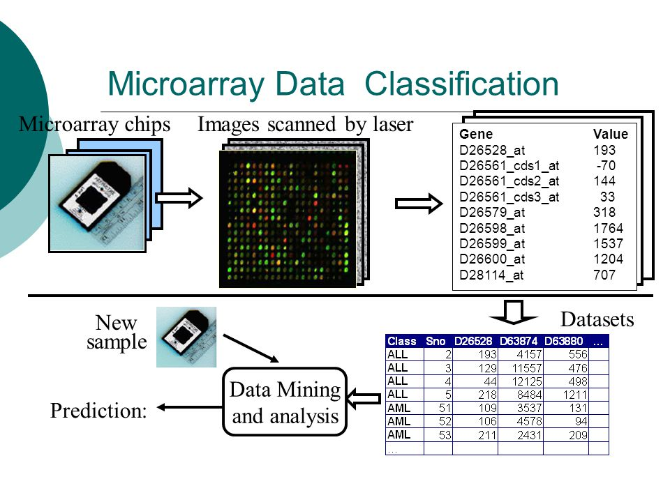 Microarray Data Classification