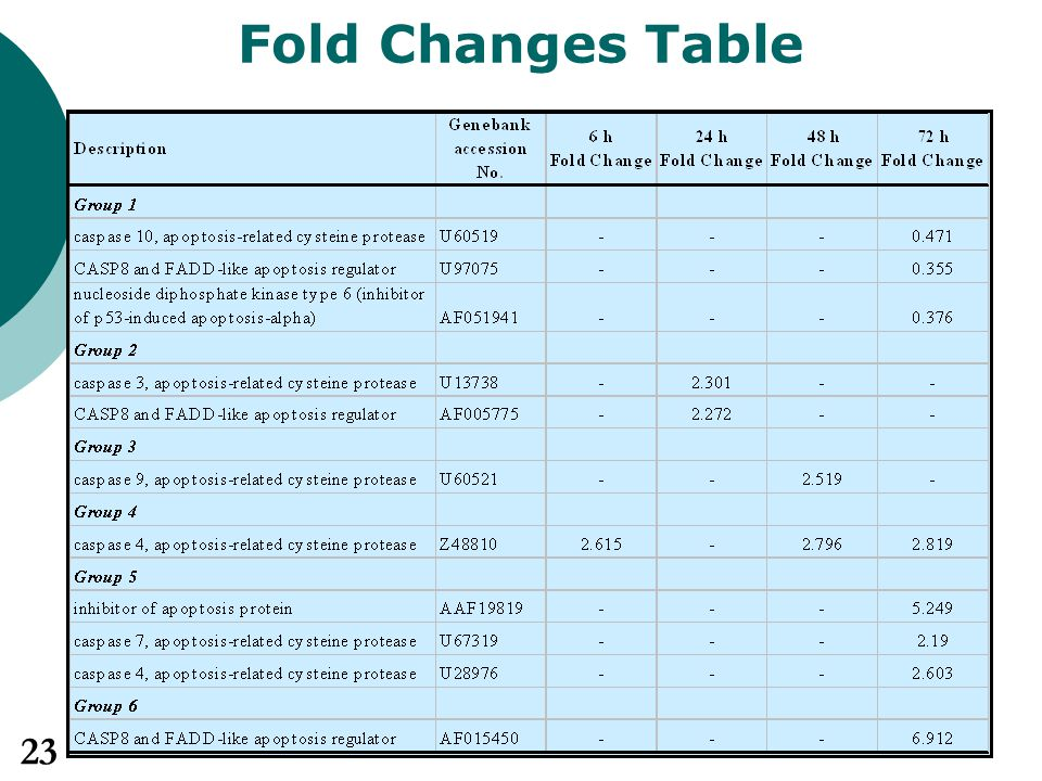 Fold Changes Table 23