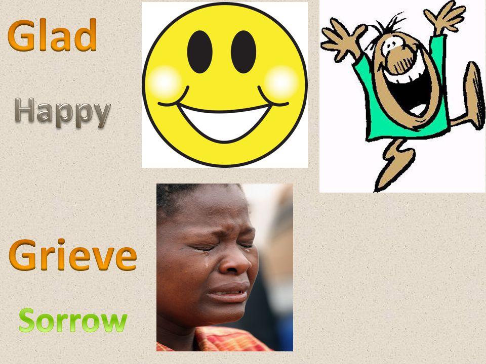 Glad Happy Grieve Sorrow