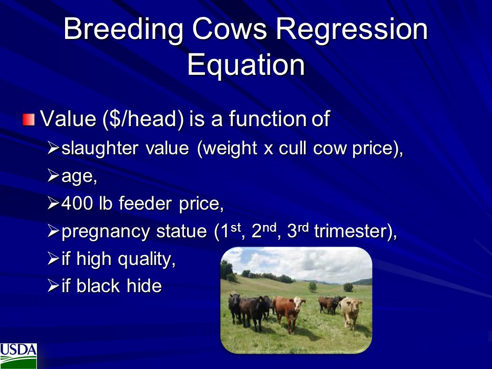 Breeding Cows Regression Equation