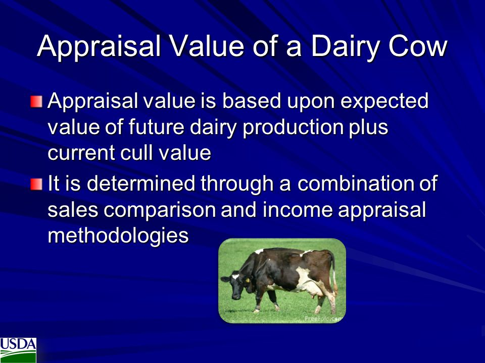 Appraisal Value of a Dairy Cow