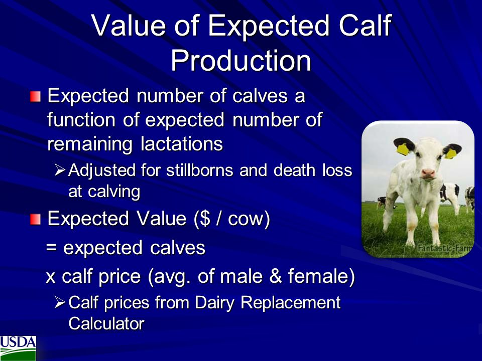 Value of Expected Calf Production