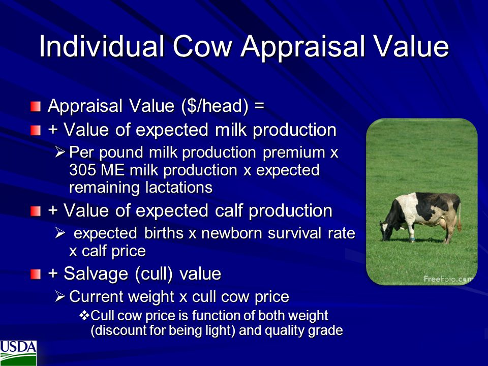 Individual Cow Appraisal Value