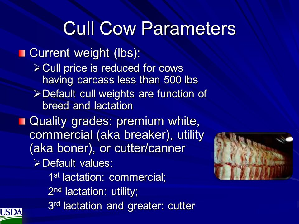 Cull Cow Parameters Current weight (lbs):